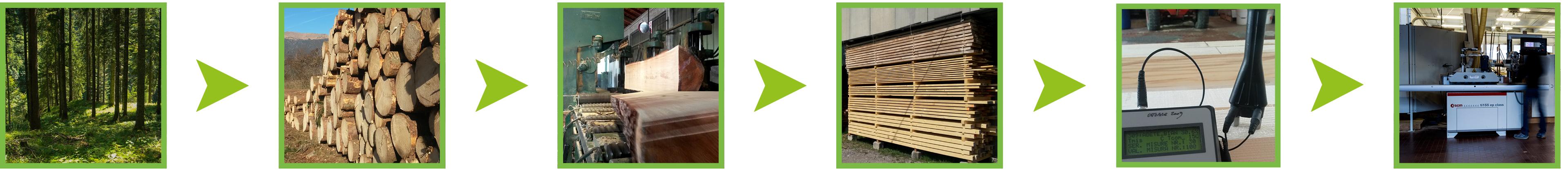 Filiera legno MSM